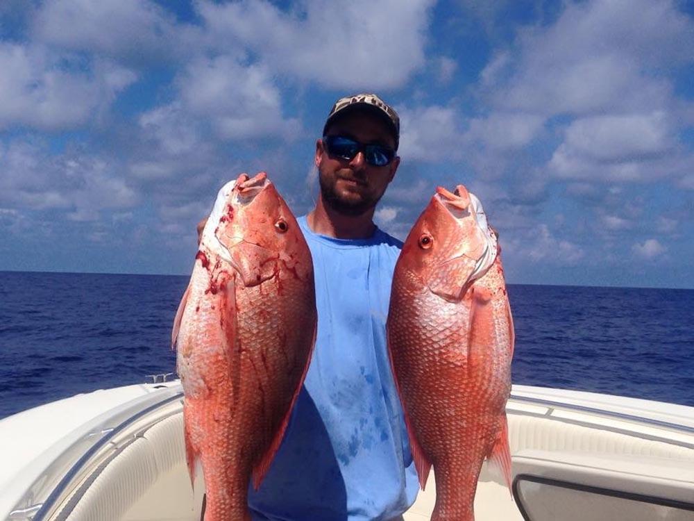 Gulf Red Snapper: 2017